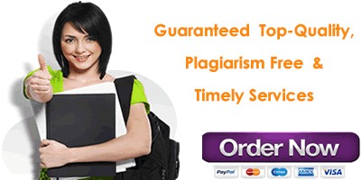An insight into essay writing services