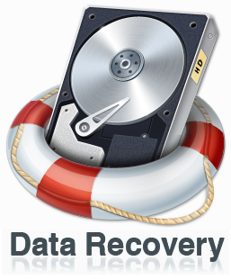 Assistance For a Crashed Hard Disk – Your Data Recovery Options.