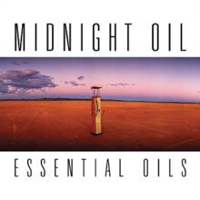 nlm oils