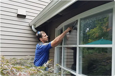 MV Window Cleaning